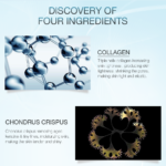 Collagen & Chondrus Crispus